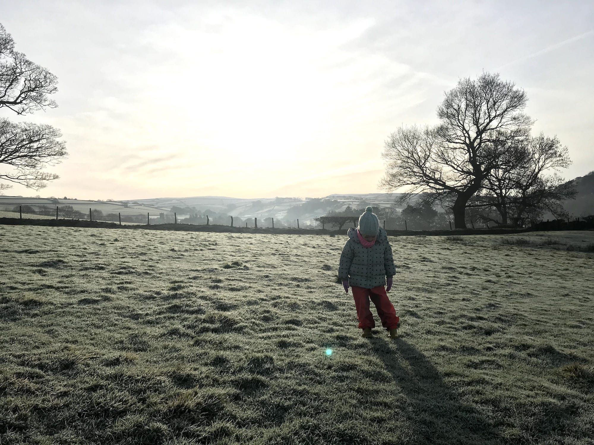 A toddler in a frosty field